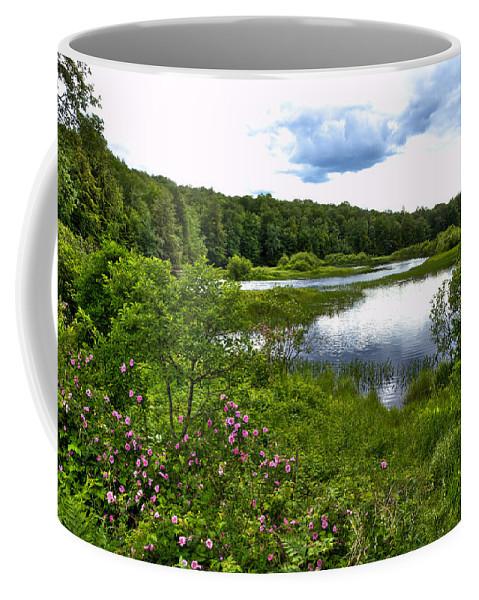Adirondack's Coffee Mug featuring the photograph Summer At The Green Bridge by David Patterson