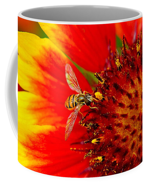 Buzz Coffee Mug featuring the photograph Summer Day by Frozen in Time Fine Art Photography