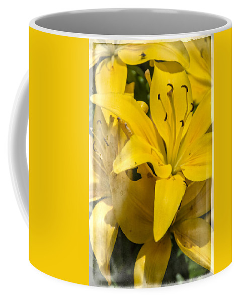 Summer Lilies Coffee Mug featuring the photograph Summer Lilies by Judy Hall-Folde