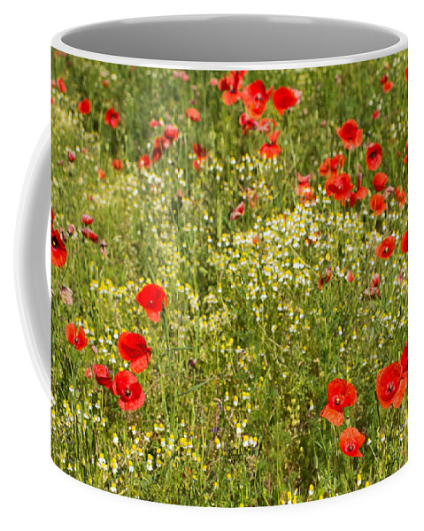 Poppy Coffee Mug featuring the photograph Summer Meadow Background by Jaroslav Frank