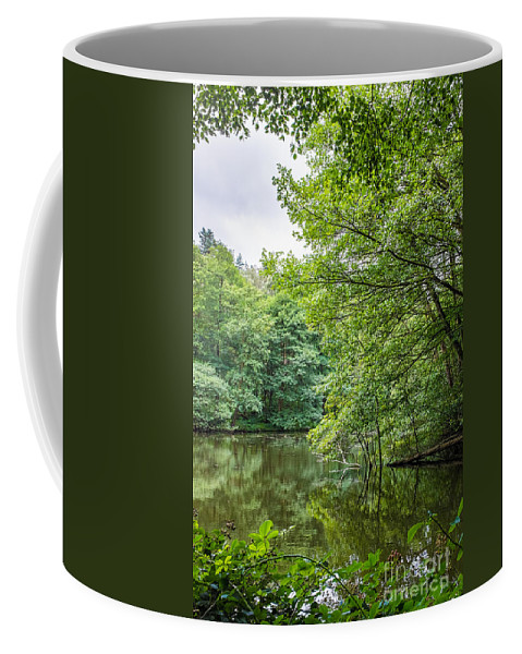 Cannock Chase Coffee Mug featuring the photograph Summer Pool Cannock Chase by Ann Garrett