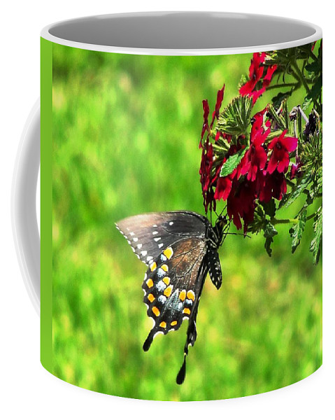 Butterfly Coffee Mug featuring the photograph Summer Refreshment by Charlie and Norma Brock