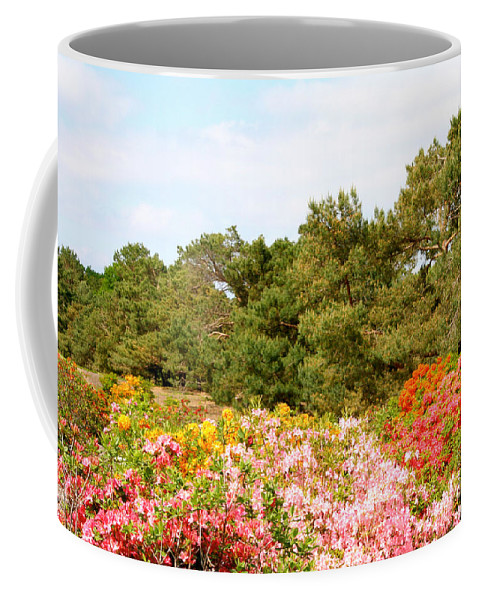 Flower Coffee Mug featuring the photograph Summer Scenes by Susan Herber