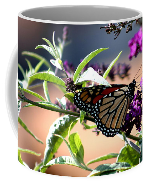 Monarch Coffee Mug featuring the photograph Summer Time Beauty by Kay Novy