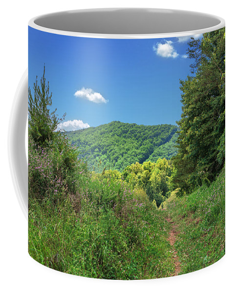 Cumberland Gap National Historical Park Coffee Mug featuring the photograph Summertime Trail At The Gap by Mary Almond