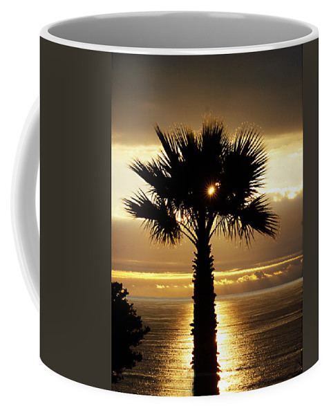 Royal Palms Coffee Mug featuring the photograph Sun And Palm And Sea by Joe Schofield