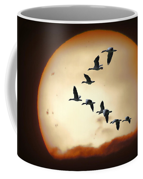 Geese Coffee Mug featuring the photograph Sun Geese by Daniel Hagerman