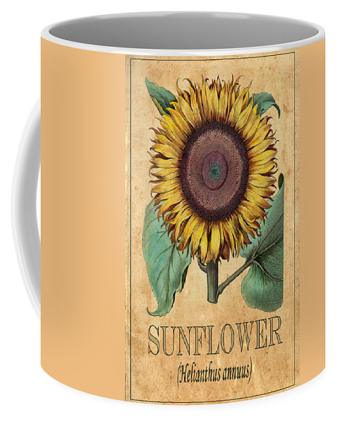 Sunflower Coffee Mug featuring the photograph Sunflower 1 by Andrew Fare
