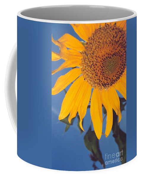 Flower Coffee Mug featuring the photograph Sunflower In The Corner by Heather Kirk