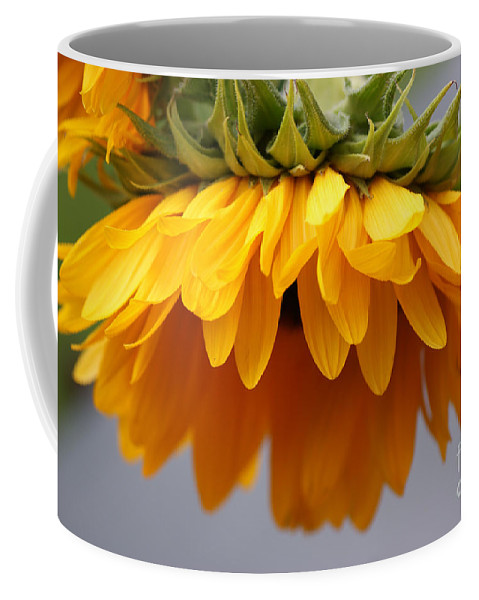 Sunflowers Coffee Mug featuring the photograph Sunflowers 6 by Carol Lynch