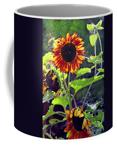 Nature Coffee Mug featuring the photograph Sunflowers In The Park by Madeline Ellis