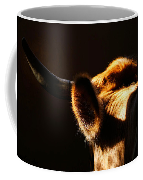 Bovine Coffee Mug featuring the photograph Sunkissed by Tracey Beer
