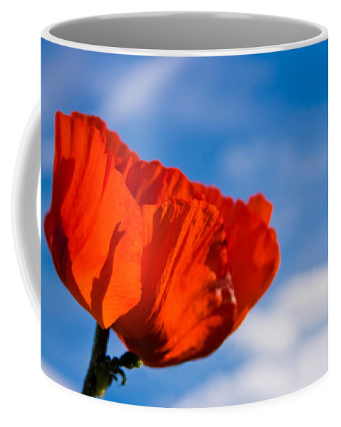 3scape Photos Coffee Mug featuring the photograph Sunlit Poppy by Adam Romanowicz