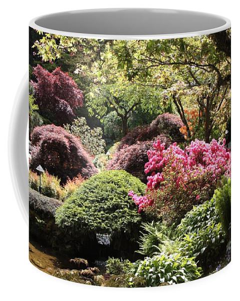 Japanese Garden Coffee Mug featuring the photograph Sunny Japanese Garden by Carol Groenen