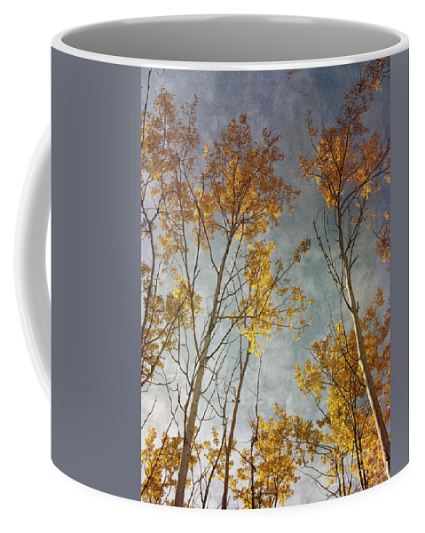 Leaves Coffee Mug featuring the photograph Sunny Leaves Tall by Priska Wettstein