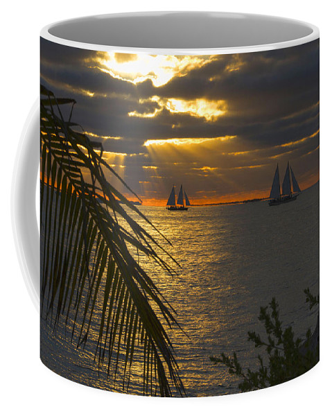 Silhouette Coffee Mug featuring the photograph Sun Rays Through The Clouds by Bob Slitzan