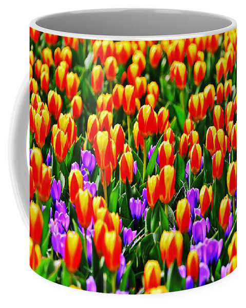 Travel Coffee Mug featuring the photograph Sunrise And Lavendar by Elvis Vaughn