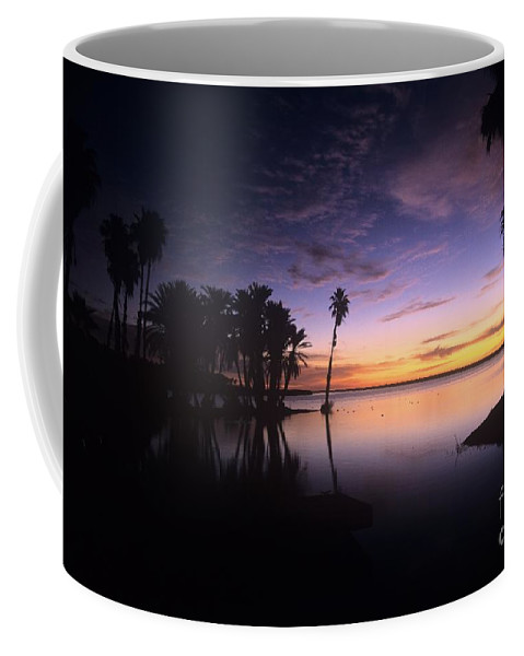 Sunrise Coffee Mug featuring the photograph Sunrise At San Jose Del Cabo by John Harmon