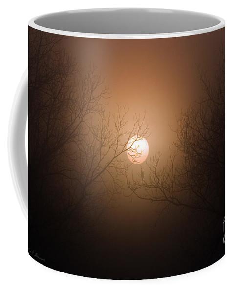 Sun Coffee Mug featuring the photograph Sunrise At The Pecan Grove Southern Alabama by John Harmon