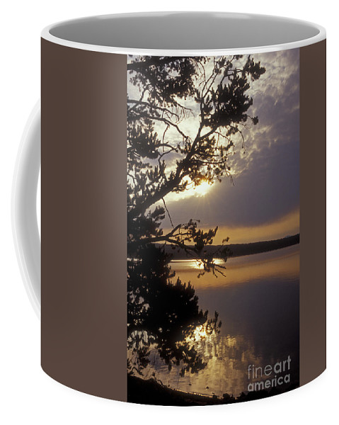 Yellowstone Coffee Mug featuring the photograph Sunrise At Yellowstone Lake by Sandra Bronstein