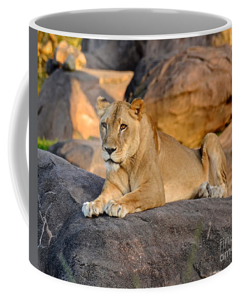Nala Coffee Mug featuring the photograph Sunset At Pride Rock by Carol Bradley