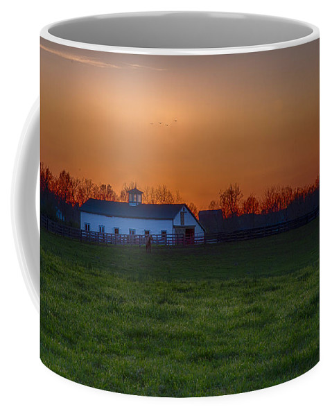 Animal Coffee Mug featuring the photograph Walmac Farm Ky by Jack R Perry