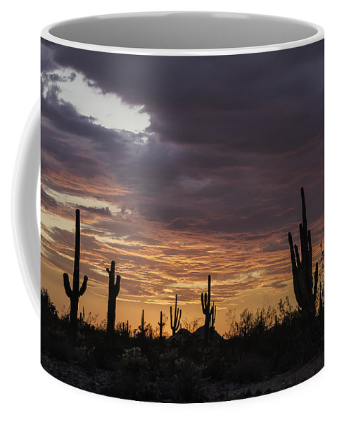 Weather Coffee Mug featuring the photograph Sunset Landscape by Lorraine Harrington