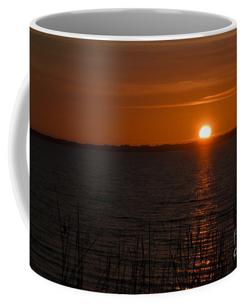 Sun Coffee Mug featuring the photograph Sunset On The Lake by Scott Hervieux