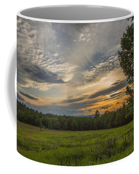 New Hampshire Coffee Mug featuring the photograph Sunset Over Lupine Fields by Chris Whiton