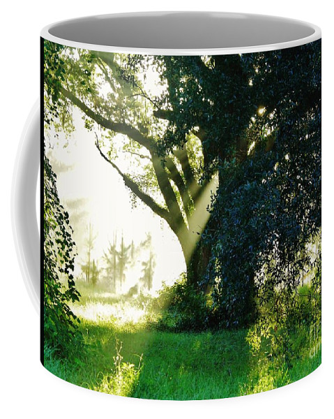 Sunshine Coffee Mug featuring the photograph Sunshine And Sunbeams by D Hackett