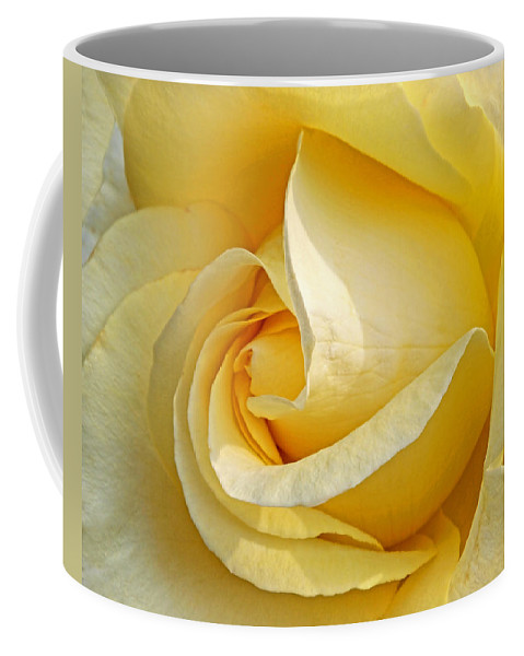 Rose Coffee Mug featuring the photograph Sunshine Rose by Gill Billington