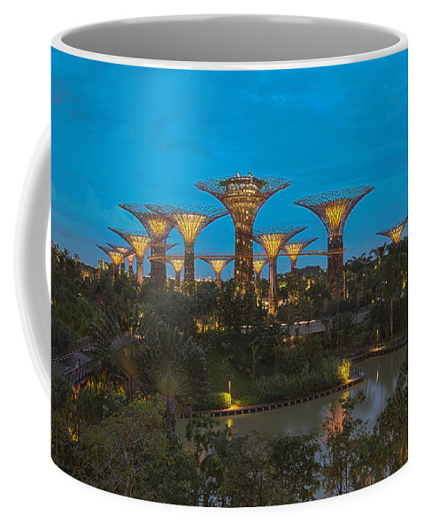 Gardens By The Bay Coffee Mug featuring the photograph Supertrees by Jennifer Grover