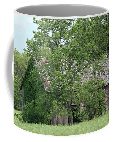 Summer Coffee Mug featuring the photograph Surrounded By Summer by Lynn Sprowl