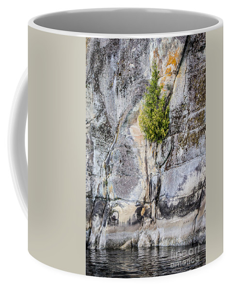 Natural Art Coffee Mug featuring the photograph Surviving The Elements by Alanna DPhoto
