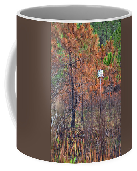 7984 Coffee Mug featuring the photograph Survivor by Gordon Elwell