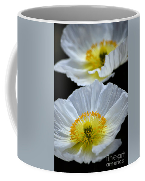 Poppy Coffee Mug featuring the photograph Suspended Beauty by Deb Halloran