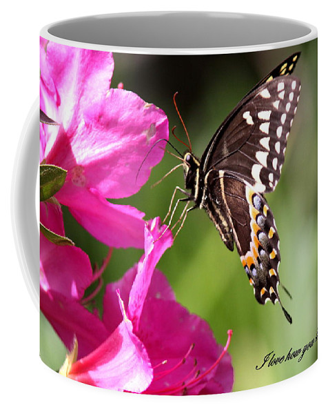 Butterfly Coffee Mug featuring the photograph Swallowtail And Azalea - Love by Travis Truelove