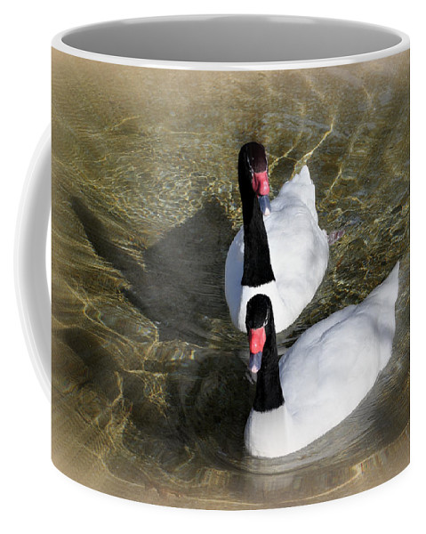 Birds Coffee Mug featuring the photograph Swan Duo by Marty Koch