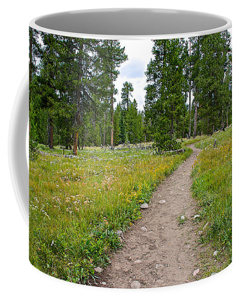 Swan Lake Trail In Grand Teton National Park Coffee Mug featuring the photograph Swan Lake Trail In Grand Teton National Park-wyoming by Ruth Hager