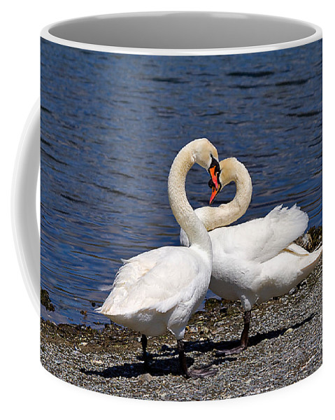 Nature Coffee Mug featuring the photograph Swans Courting by Louise Heusinkveld