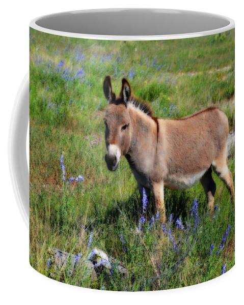 Mini Coffee Mug featuring the photograph Sweet Miniature Donkey by Lynn Bauer
