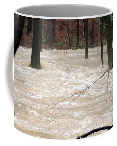 Dry Creek Coffee Mug featuring the photograph Swift Waters by Kim Pate