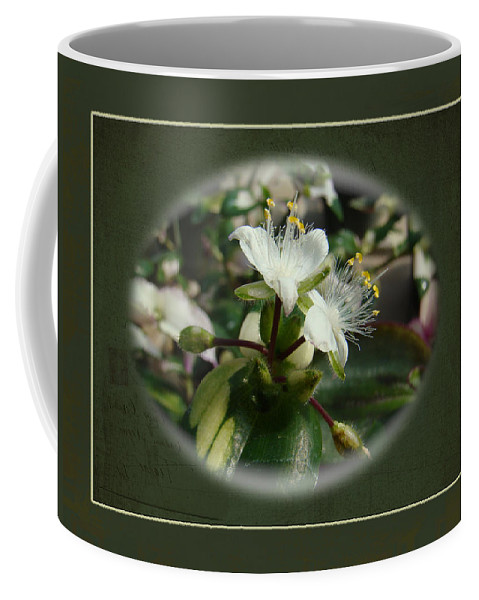 Sympathy Coffee Mug featuring the photograph Sympathy Greeting Card - Elegant Floral Green And White by Mother Nature