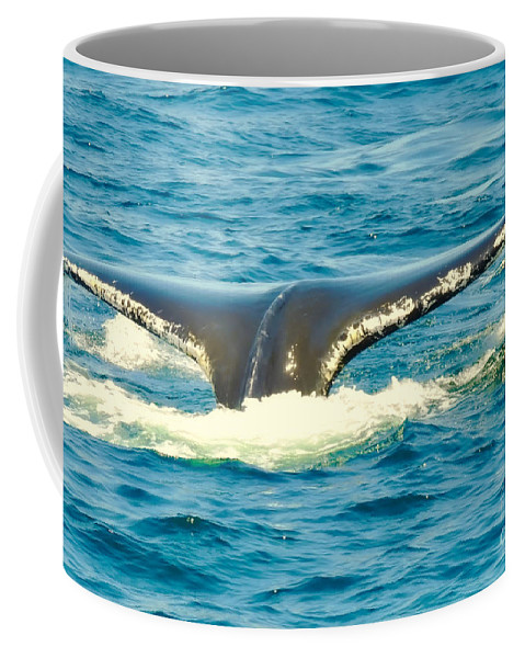 Nature Coffee Mug featuring the photograph Tail From The Deep by Paul Smith