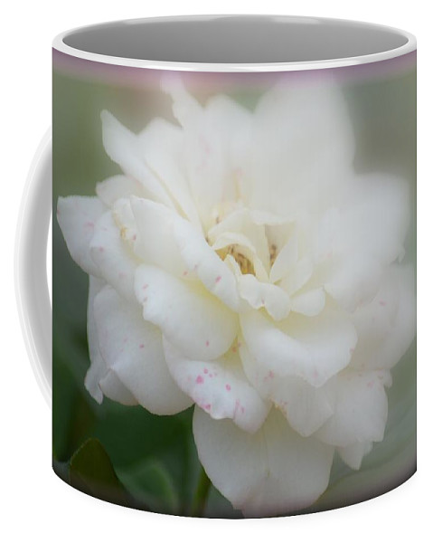 Tainted Rose Coffee Mug featuring the photograph Tainted Rose by Maria Urso
