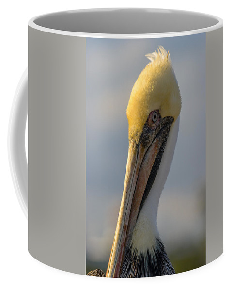 Beak Coffee Mug featuring the photograph Take My Best Side by Ed Gleichman