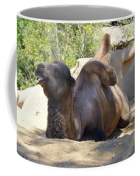 Camel Coffee Mug featuring the photograph Taking A Rest by Carla Parris