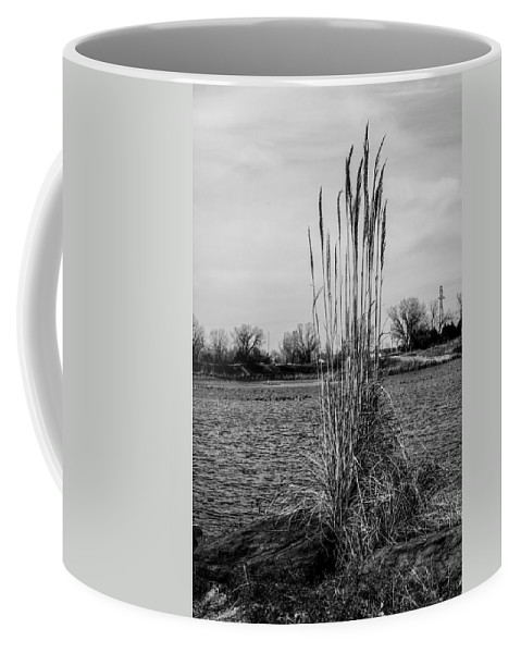 Cloudy Coffee Mug featuring the photograph Tall Grass by Doug Long
