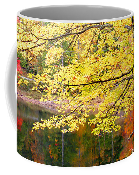 Plants Coffee Mug featuring the photograph Tanasee Creek Lake And Yellow Tree by Duane McCullough