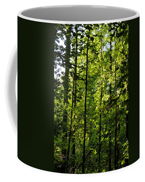 Tannehill Coffee Mug featuring the photograph Tannehill Forest by Maria Urso